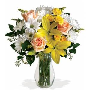 Blooms Today Daisies and Sunbeams Flower Delivery