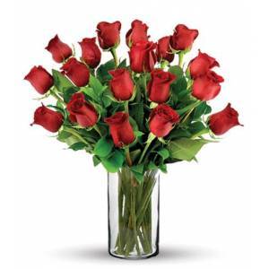 Blooms Today 18 Red Long-Stem Roses Bouquet Flower Delivery