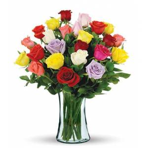 Blooms Today 24 Multi-Color Long-Stem Roses Bouquet Flower Delivery