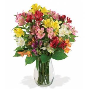 Blooms Today Brighten Their Day Bouquet Flower Delivery