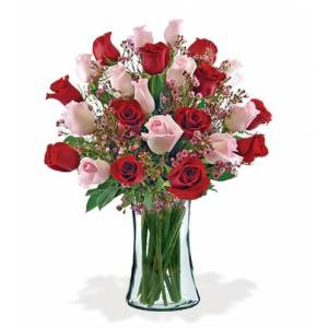 Blooms Today 24 Ultimate Elegance Roses Bouquet Flower Delivery
