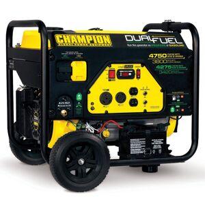 Champion Generators Champion 3800 Watt Dual Fuel Portable Generator