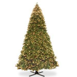 National Tree Company National Tree 16' Feel Real Downswept Douglas Fir Hinged Tree with 2100 Dual Color Led Lights  - Green