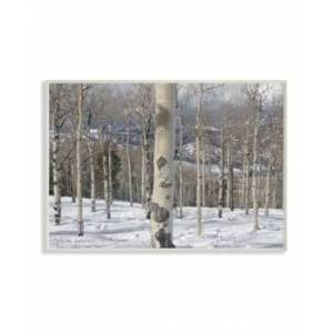 """Stupell Industries Winter Birches Photography Wall Plaque Art, 12.5"""" x 18.5""""  - Multi"""