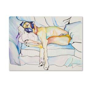 "Trademark Global Pat Saunders-White 'Sleeping Beauty' 26"" x 32"" Canvas Wall Art  - No Color"