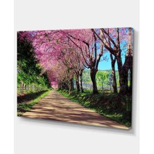 "Design Art Designart Cherry Blossom Pathway In Chiang Mai Canvas Art Print - 32"" X 16""  - Green"