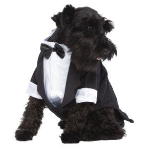 Parisian Pet Party Dog Tux  - Black