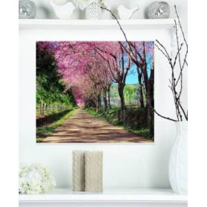 "Design Art Designart 'Cherry Blossom Pathway In Chiang Mai' Landscape Metal Wall Art - 20"" X 12""  - Multi"
