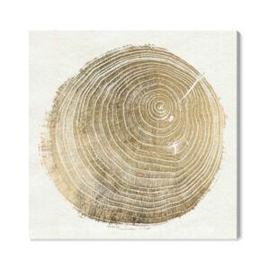 """Oliver Gal Cuore Di Legno Ii Canvas Art - 30"""" x 30"""" x 1.5""""  - White"""