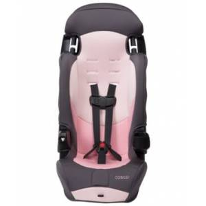 Cosco Finale Dx 2-in-1 Booster Car Seat, Sweetberry  - Dusty Rose