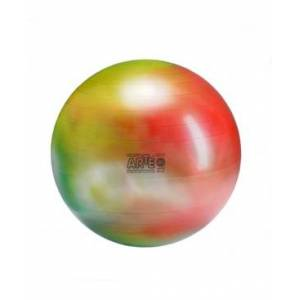 Gymnic Arte Exercise Ball Plus 55  - Multi