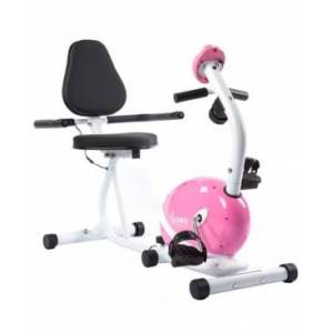 Sunny Health & Fitness Magnetic Recumbent Bike  - Pink