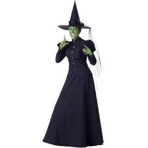 Generic Witch Adult Halloween Costume