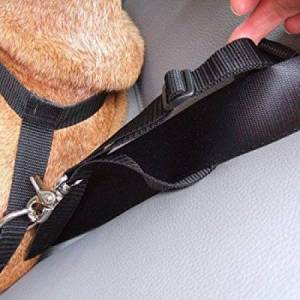 Bowsers Pet Harness to Seat Belt Attachment