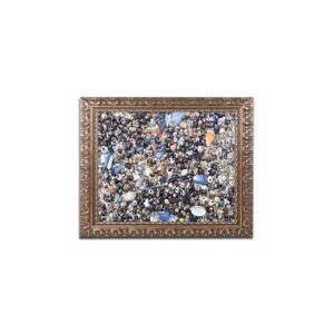 Dietz Nicole Dietz 'Snails and Such' Ornate Framed Art