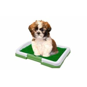 Pets Indoor Grass Training PatchPad 3 Layers Puppy Potty