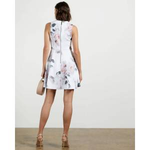 Ted Baker Bouquet Skater Dress  - Ivory - Size: Ted Size 1 (US 4)