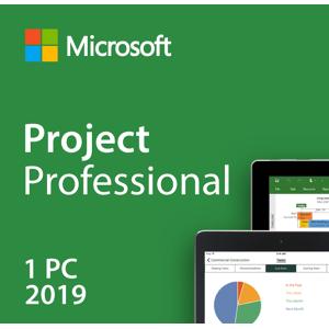 Microsoft Visio Professional 2019 Key
