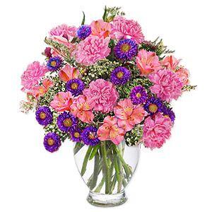 Flora2000 Purple Passion