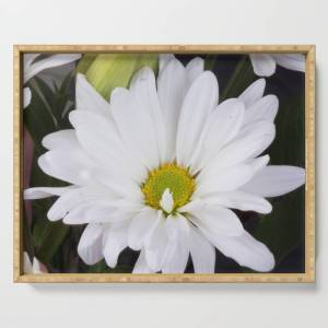 Society6 White Flower Serving Tray by msqrd2