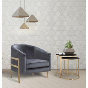 Chic Home FAC2736 Artemis Modern Contemporary Steel Frame Velvet Bucket Club Chair, Grey