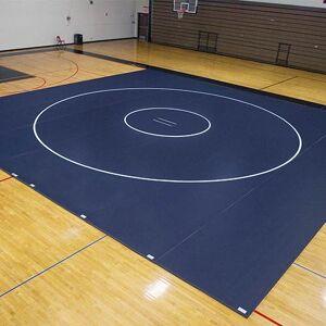 EZ Flex Sport Mats 1393103 42 ft. x 40 ft. x 2 in. Wrestling Mat System