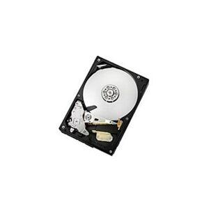 Hitachi 7K1000.C Series HDS721025CLA382 Internal 250 GB 3.5-inch Hard Drive - 7200 RPM - SATA/300