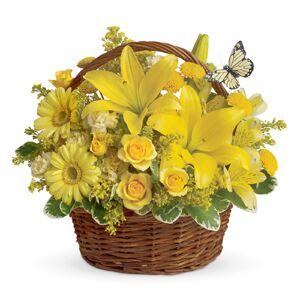 Teleflora Basket Full of Wishes