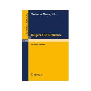 Springer Shop Burgers-KPZ Turbulence
