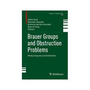 Springer Shop Brauer Groups and Obstruction Problems