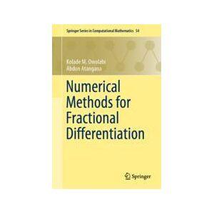 Springer Shop Numerical Methods for Fractional Differentiation
