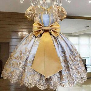 DHgate vintager girls year party princess girl dresses costume wedding evening kids for children birthday vestidos