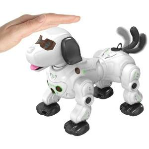 DHgate 2.4g remote control robot dog infrared tracking spray wireless smart rc puppy q6pd for kids