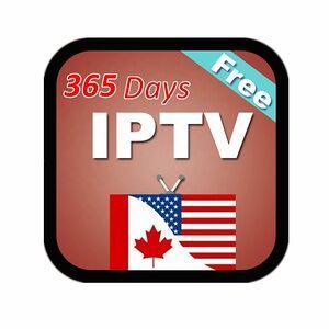 TVLINK USA IPTV Canada IPTV Subscribe Free Watch 12 Months IPTV Europe Android TV box Smart TV M3U8 VLC