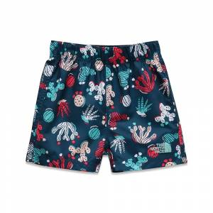 The North Face Infant Hike/Water Short - 18M - Blue Wing Teal Cactus Lino Print