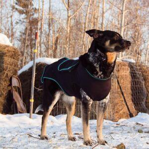 Benefab Canine Comfort & Care Shirt