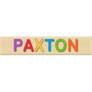 Fat Brain Toys Personalized Name Puzzle - PAXTON - Early Learning Toys for Babies - Fat Brain Toys