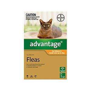 Advantage Kittens & Small Cats 1-10lbs 4 Doses