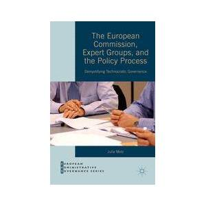 Palgrave The European Commission, Expert Groups, and the Policy Process ,Julia Metz[Hard cover]