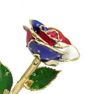 Love Is A Rose 24k Gold American Flag Rose with Gold Trim