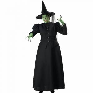 SIERRA ACCESSORIES Women's Witch Costume, Size: XXL