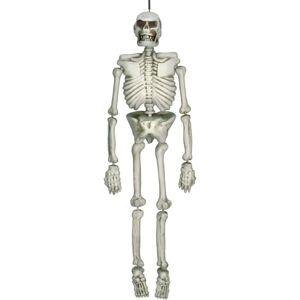 """Amscan Halloween Life-Size Skeleton, 54""""H x 15""""W x 10""""D, White"""