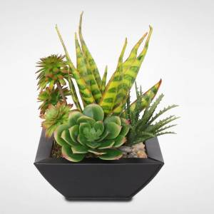Jenny Silks Artificial Tropical Succulents in a Black Zinc Metal Pot