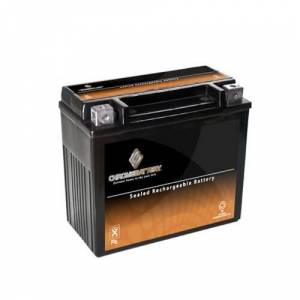 Overstock YTX20-BS 270 CCA Battery for Arctic Cat Panther 550, Year (97-'01)
