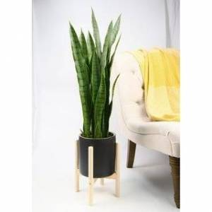 "UPshining Mid Century Ceramic Planter 8"" Black Planter with Wood Stand (Natural)"