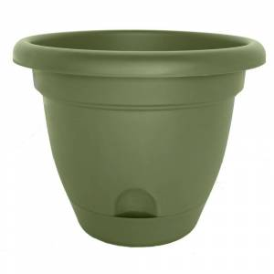 Bloem Lucca Living Green Planter (Pack of 6) (12)