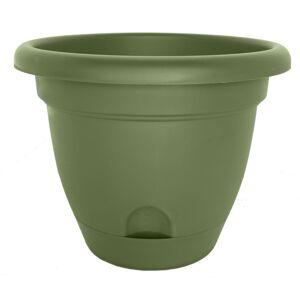 Bloem Lucca Living Green Planter (Pack of 6) (14)