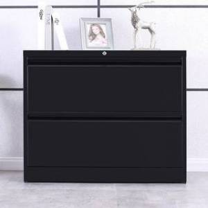 Merax Lateral File Cabinet 2-Drawer with Lock and Key (Black)