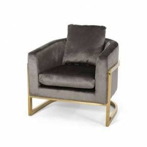 Christopher Knight Home Briarcliff Modern Velvet Glam Armchair with Stainless Steel Frame by Christopher Knight Home (Gray, Gold)