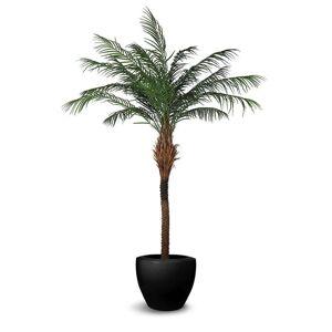 LEPRESENT Le Present Phoenix Faux Botanical Artificial Palm